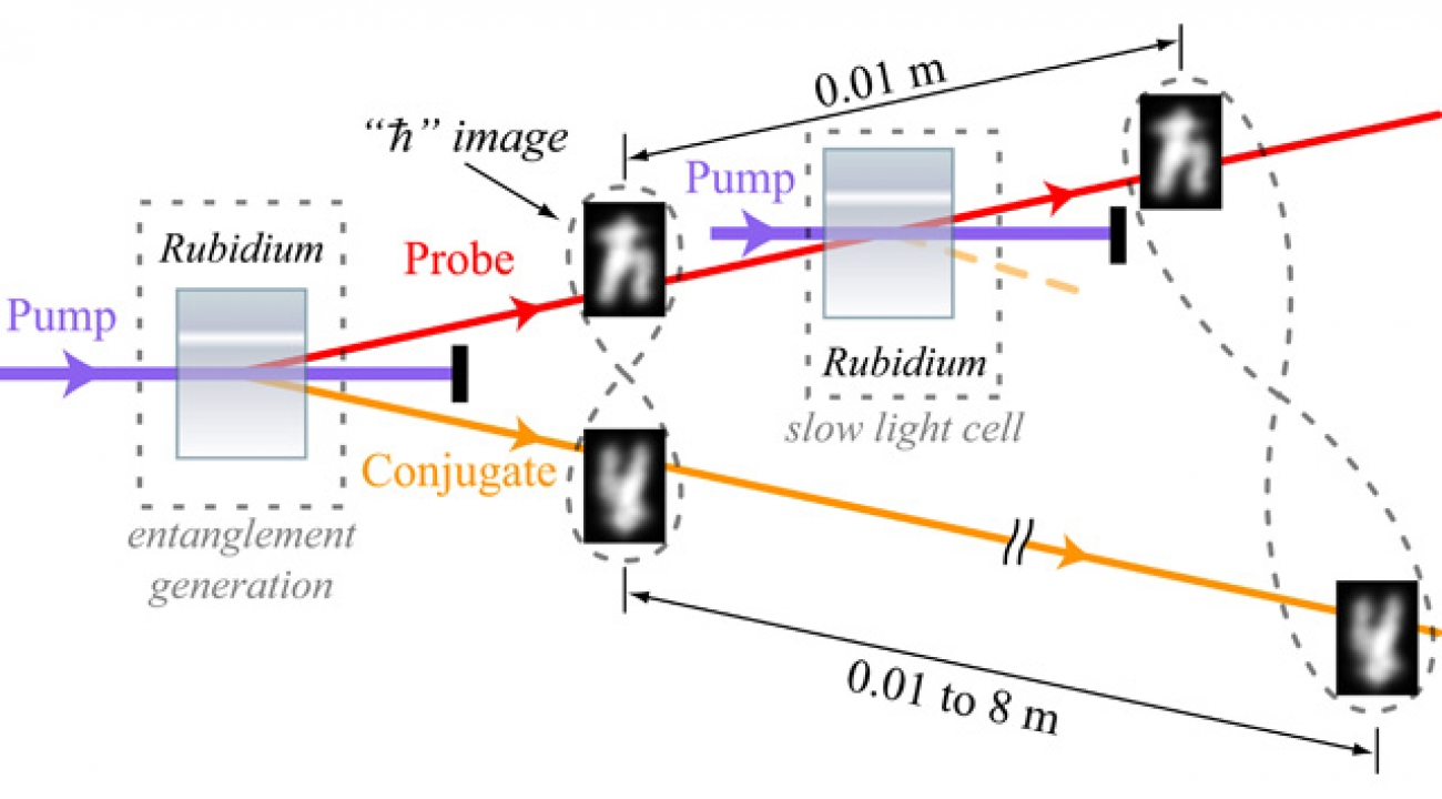 In this simplified representation of the experimental setup for a 'quantum buffer,' a cell containing rubidium gas is used to produce a pair of information-rich entangled images. One of the images goes through a second rubidium gas cell and slows down, which is potentially useful for feeding data at properly timed intervals to future quantum computers. The delay can be controlled such that, during the time it takes one image to travel a centimeter, the other image can travel up to 8 meters. Twisted loops il