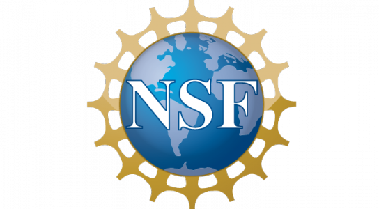 NSF Logo